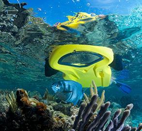 Coral Reef Board Rental