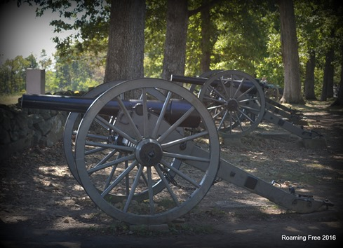 Cannons along the Confederate line