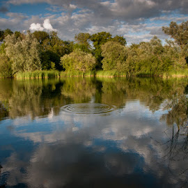 Lake in Evening Light by Geoff Stone - Landscapes Waterscapes ( ripples, trees, reflections, lake, evening )