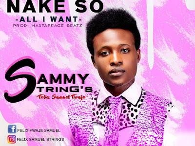 Music : Sammy Strings ~ Abinda nake so (All I Want)