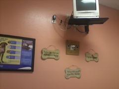 Vet Exam Room Wall