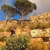 am Kap, neue Touren zwische Kapstadt und Namibia