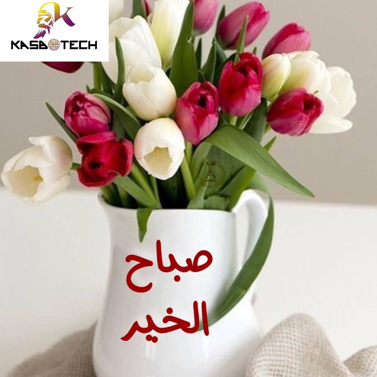 صباح الخير ومساء الجمال والاحساس