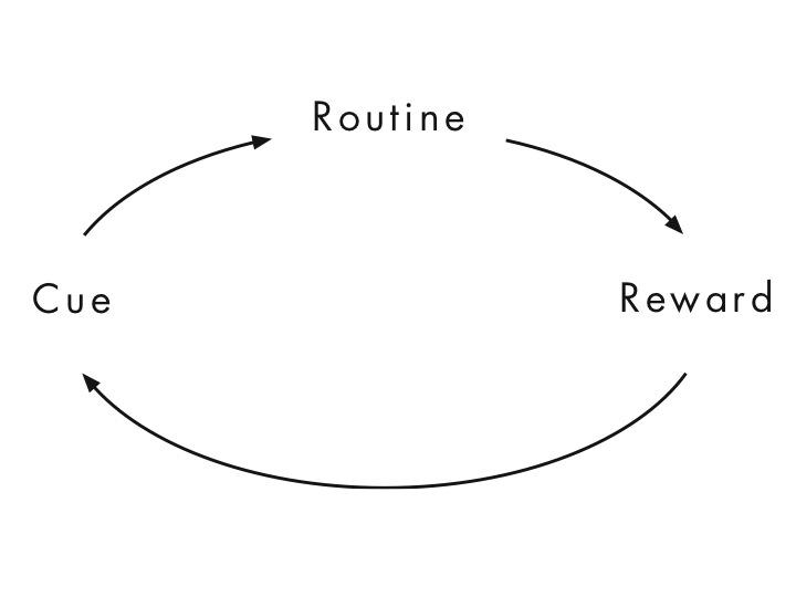 cue routine reward the cycle of habits