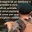 BuddadaDog Parson Jack Russell's profile photo