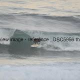 _DSC5956.thumb.jpg
