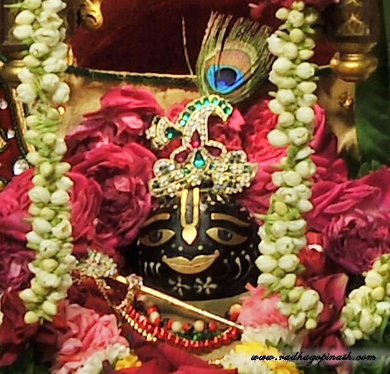 ISKCON Chowpatty Deity Darshan 19 Dec 2015 (5)