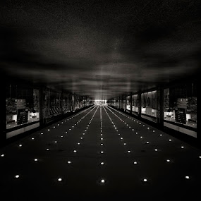 Runway by Sasa Lazic - Buildings & Architecture Other Interior ( lights, interior, bw, long exposure, architecture, black and white, building, monotone )