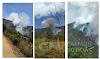 Miguel Calmon: incêndio na região do Parque das Sete Passagens - Ambientalistas pedem ajuda