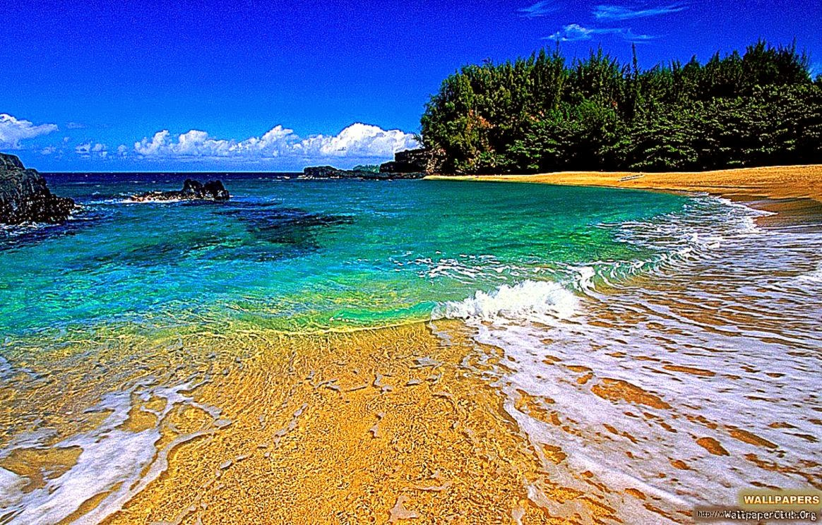 hawaii wallpaper free hd - photo #7