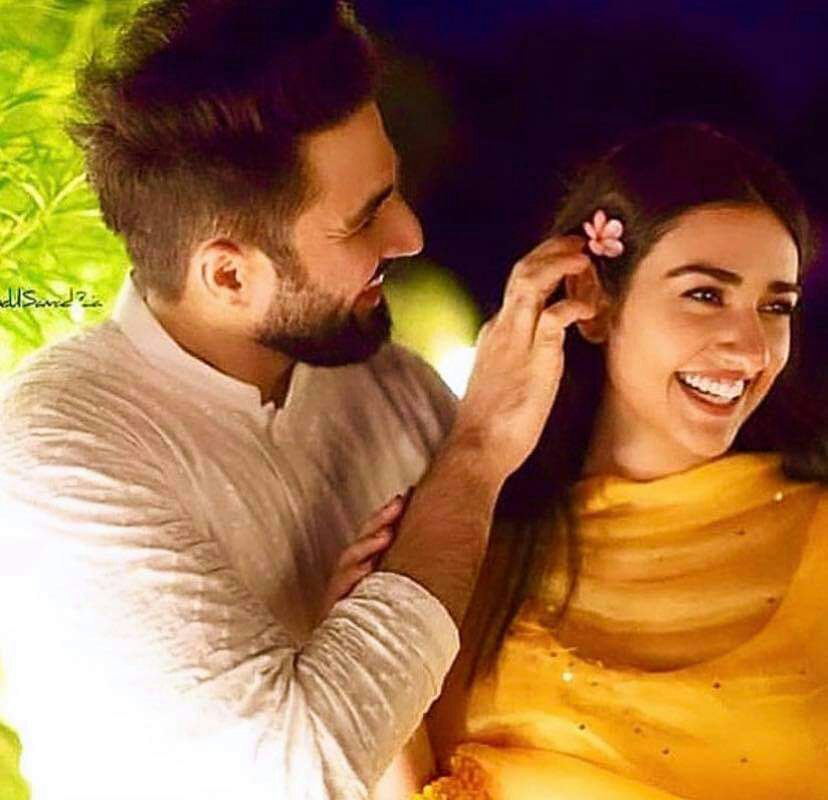 Sarah Khan and Falak Shabbir Mehndi Pictures and Videos
