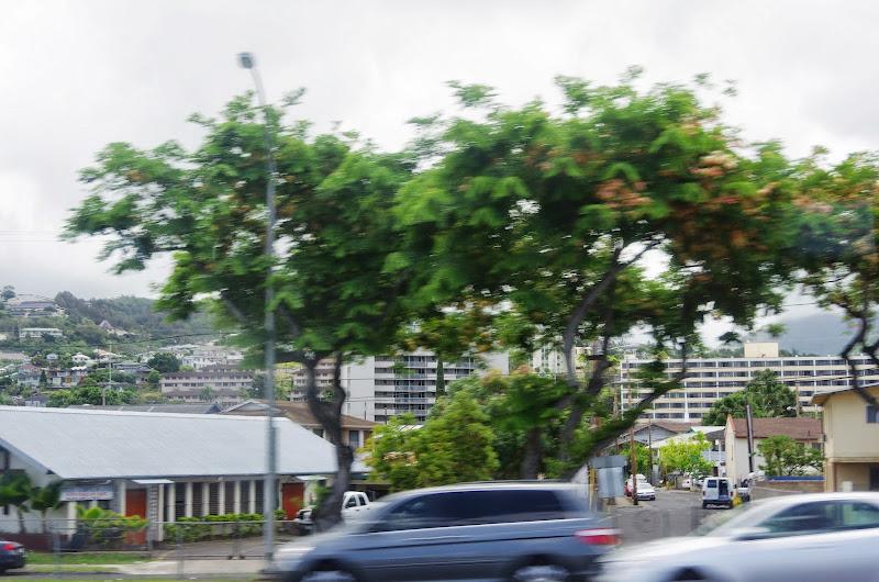 06-17-13 Travel to Oahu - IMGP6823.JPG