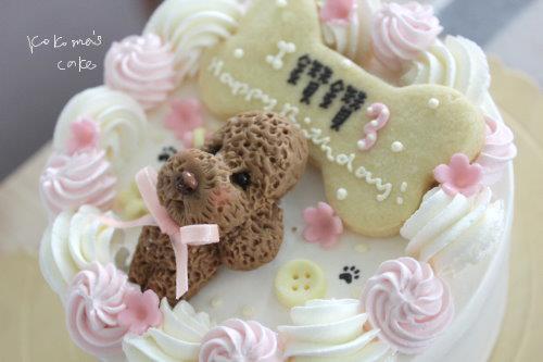 pet cake