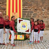 Ofrena floral Diada Nacional de Catalunya Seu Vella Lleida 11-09-2015 - 2015_09_11-Ofrena floral Seu Vella-25.JPG