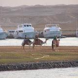 Egypte-2012 - 100_8808.jpg