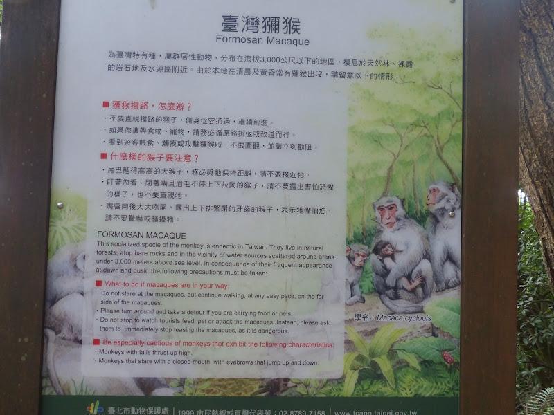 Taipei. Petite promenade au départ de Tianmu - rando%2B029.JPG