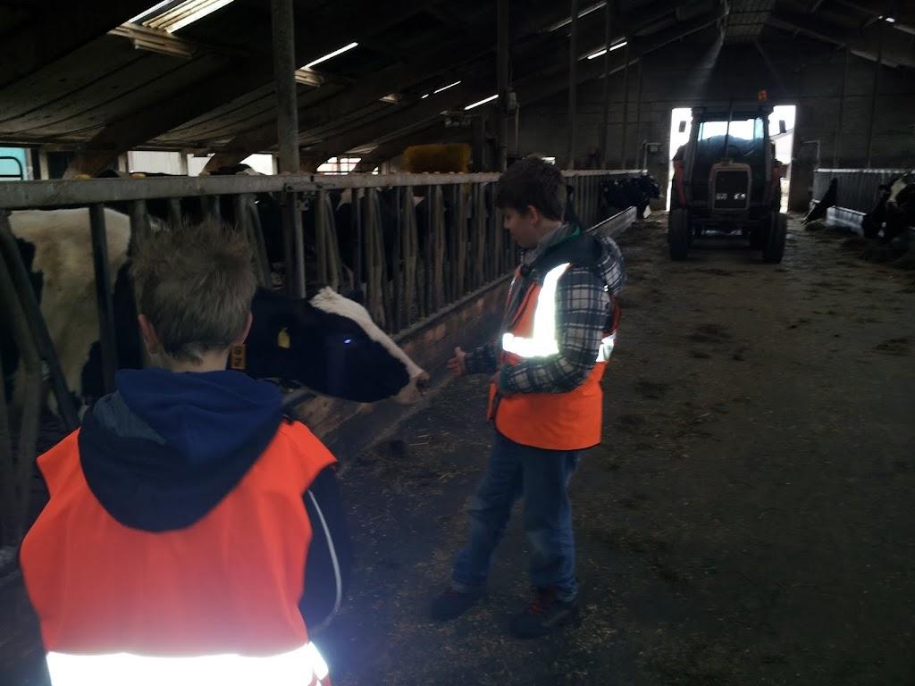 Welpen - Naar de boerderij - 20120331_111548.jpg