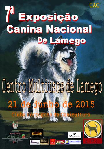 """Lamego elege """"Campeão Nacional de Beleza"""" em exposição canina"""