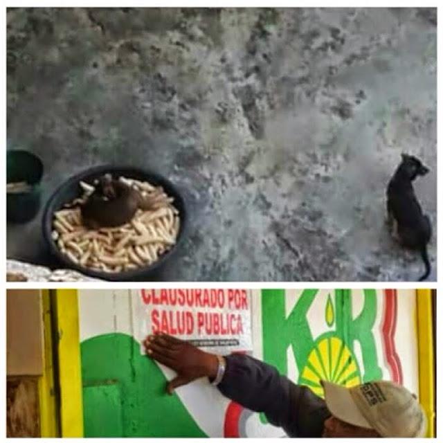 Cierran picapollo chino por foto de perro encima de plátanos ¡ que investiguen que tipo de carne servían!