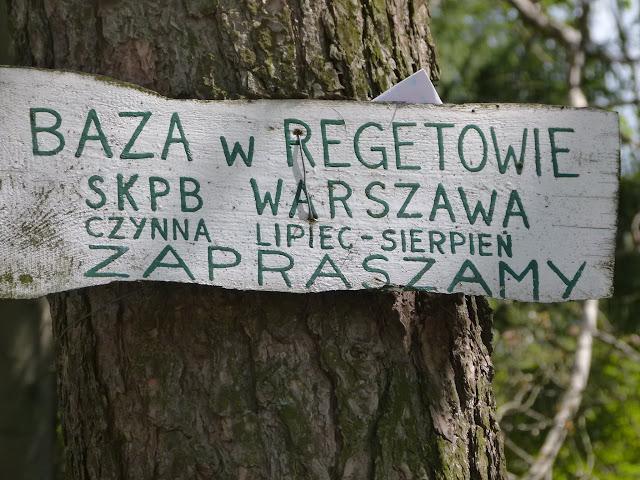 Zdynia Regietów - P1150912.JPG