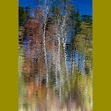 reflections_MG_0809-copy.jpg