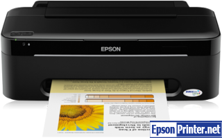 How to reset Epson S22 printer