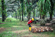 Lowongan Kerja Pekanbaru   PT Duta Swakarya Indah September 2021