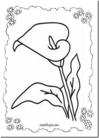 ´colorear primavera masdibujos  (12)