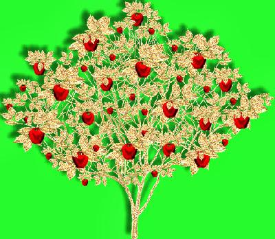 GOLDAPPLE_TREE_MM.jpg