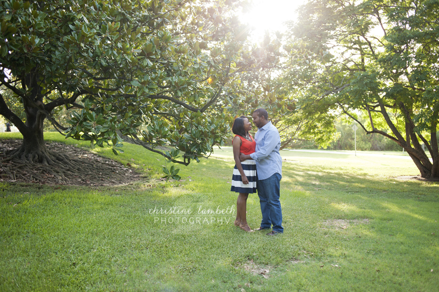 Couple under magnolia trees for first anniversary photos
