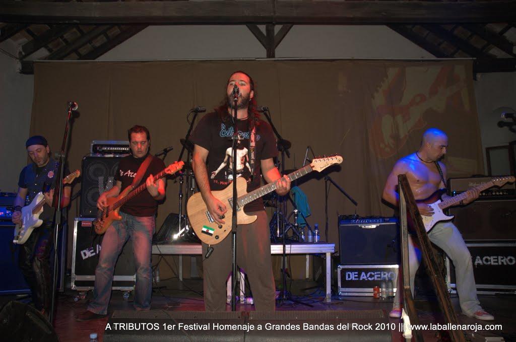 A TRIBUTOS 1er Festival Homenaje a Grandes Bandas del Rock 2010 - DSC_0158.jpg