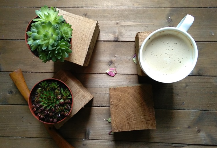 succulents and wood blanks