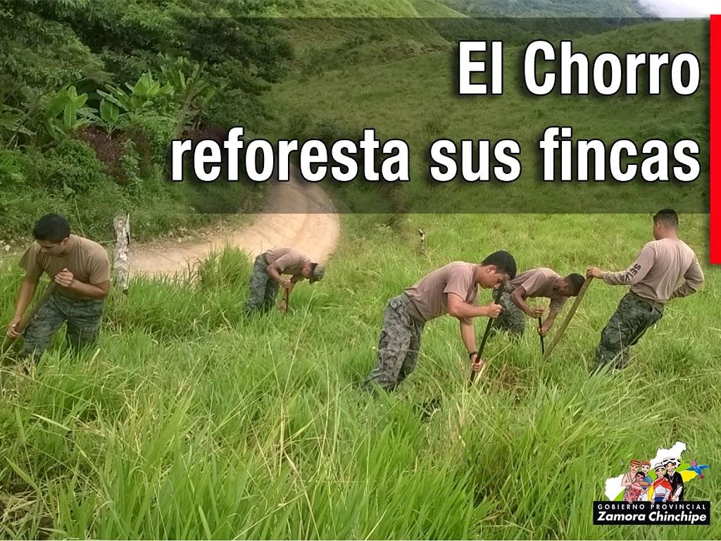 EL CHORRO REFORESTA SUS FINCAS CON APOYO DE LA PREFECTURA