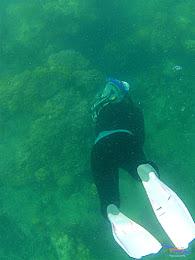 pulau harapan, 6-7 juni 2015 gopro 021