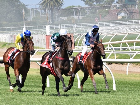 race 5_bd preview_fillies_finish 2