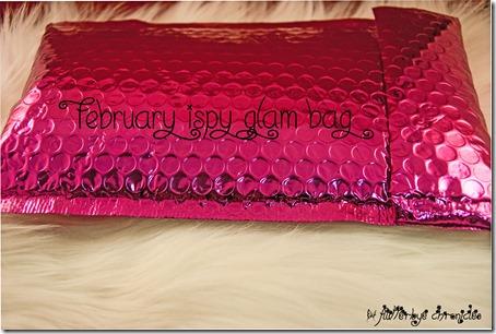 February Ipsy 1