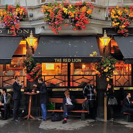 The Red Lion by Tomasz Budziak - City,  Street & Park  Street Scenes ( london, street scenes, city,  )