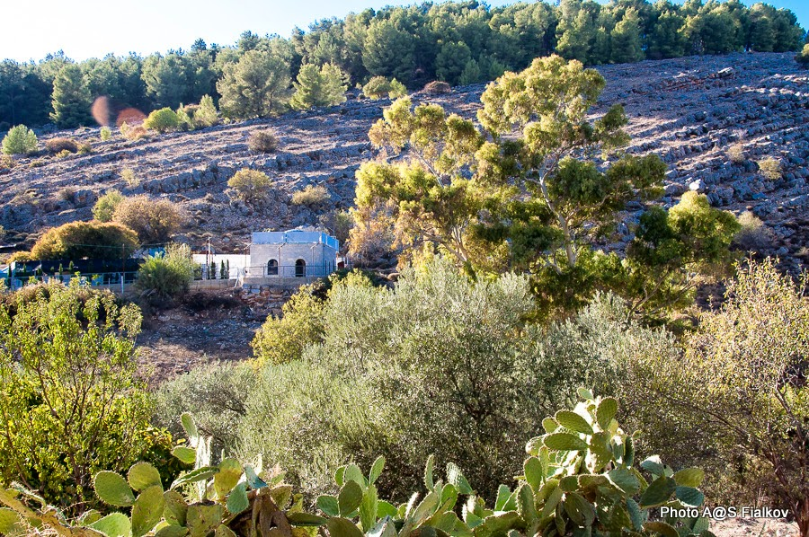 Амука. Экскурсия по Верхней Галилее. Гид в Израиле Светлана Фиалкова.