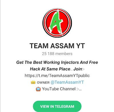 Team-Assam-YT