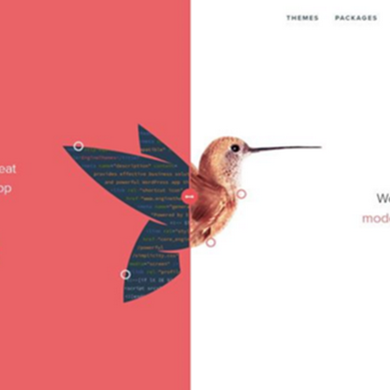 10 ejemplos de diseños web con pantalla dividida