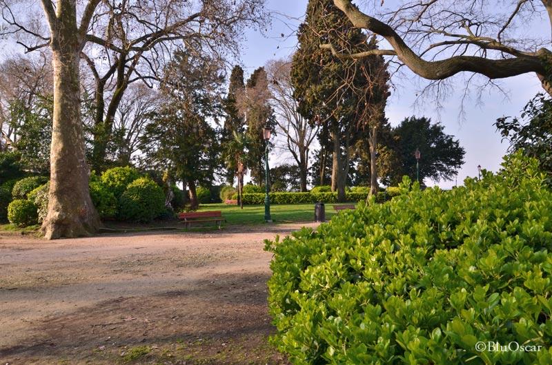 Giardini Napoleonici 16 03 2016 N4