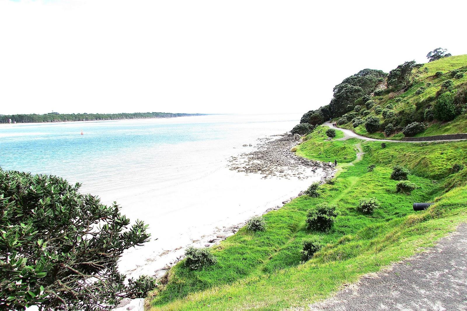 Tauranga Bay.jpg