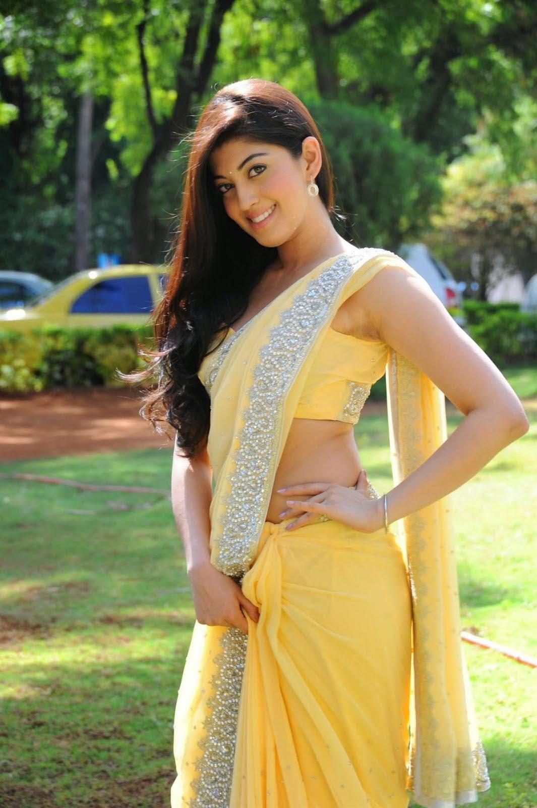Pranitha Subhash Hot Yellow Transparent Saree Pictures | Pranitha ...