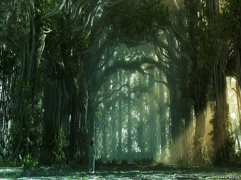 Nightmare Of Lands 10, Magical Landscapes 3