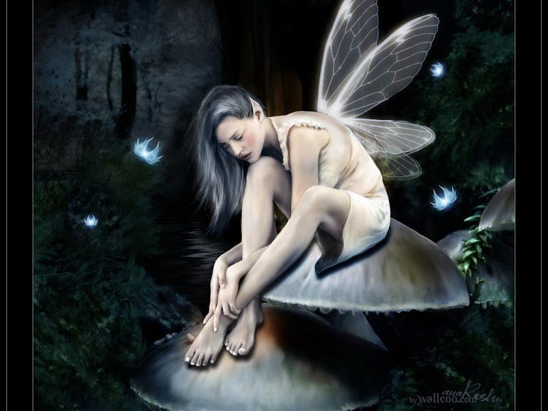 Fairy Wallpaper, Fairies Girls