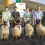 Stephen Grealis, Currane, Achill had the  Best Ram Lamb (Confined) at the 21st Achill Sheep Show (Taispeántas Caorach Acla 2007) at Pattens Bar Derreeens Achill, 2nd was Mark Davitt, 3rd Padraig Gallagher and 4th Thomas Gallagher. Photo: © Michael Donnelly