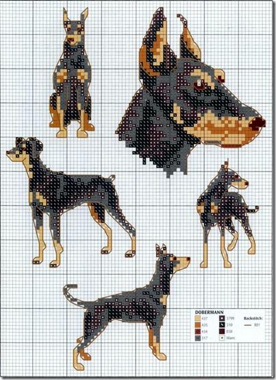 perros punto de cruz (15)
