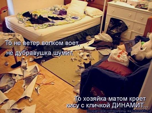 1494626394_kotomatricy-11