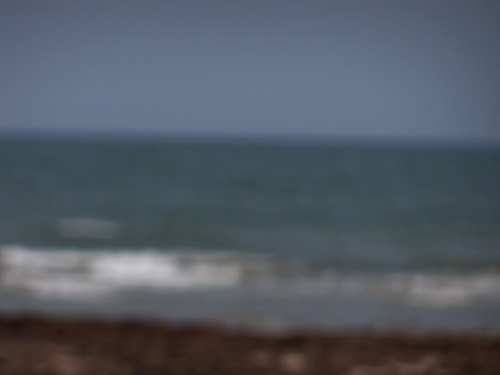 Surfside 2011 - 100_9488.JPG