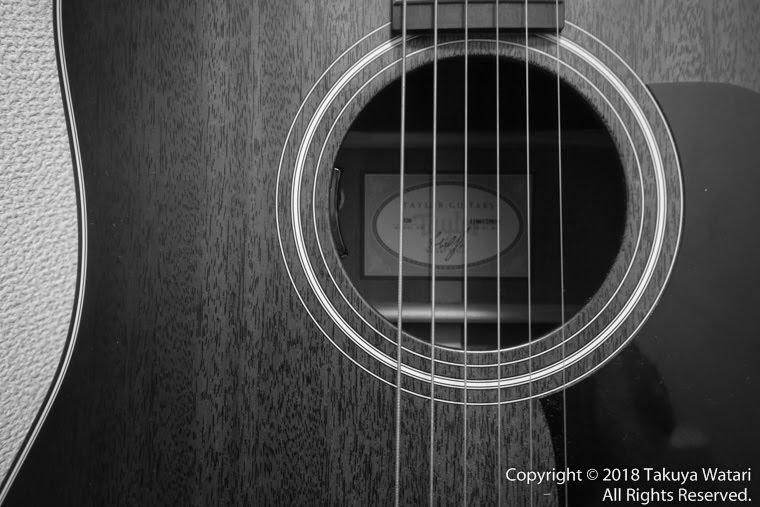 Taylor guitarの写真